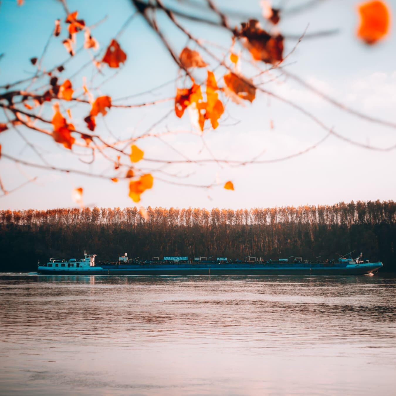 industrielle, Transport, Frachtschiff, Seitenansicht, Lastkahn, Flussufer, Fluss, Danube, Wasser, Landschaft