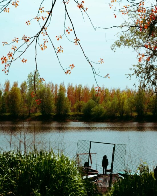 september, autumn, standing, pier, person, riverbank, forest, land, lake, reflection