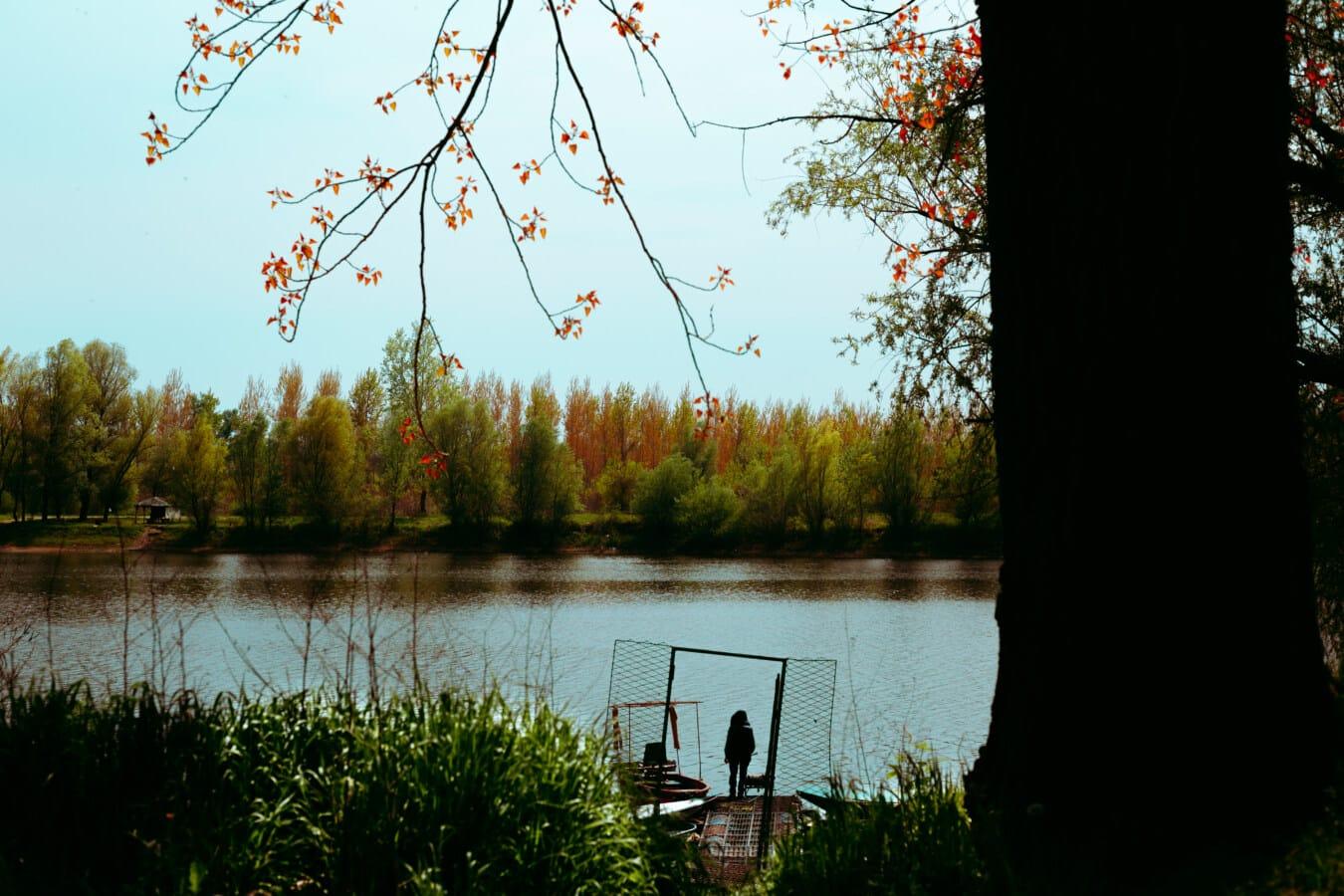Struktur, Schatten, Flussufer, Person, Flussschiff, Landschaft, Natur, Sumpf, Wasser, Reflexion