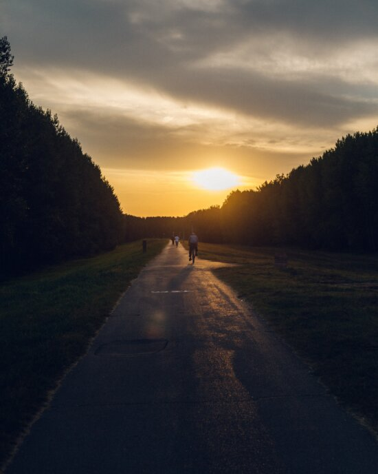 asphalt, road, sunset, people, bicycle, recreation, bicycling, slope, ascent, sun