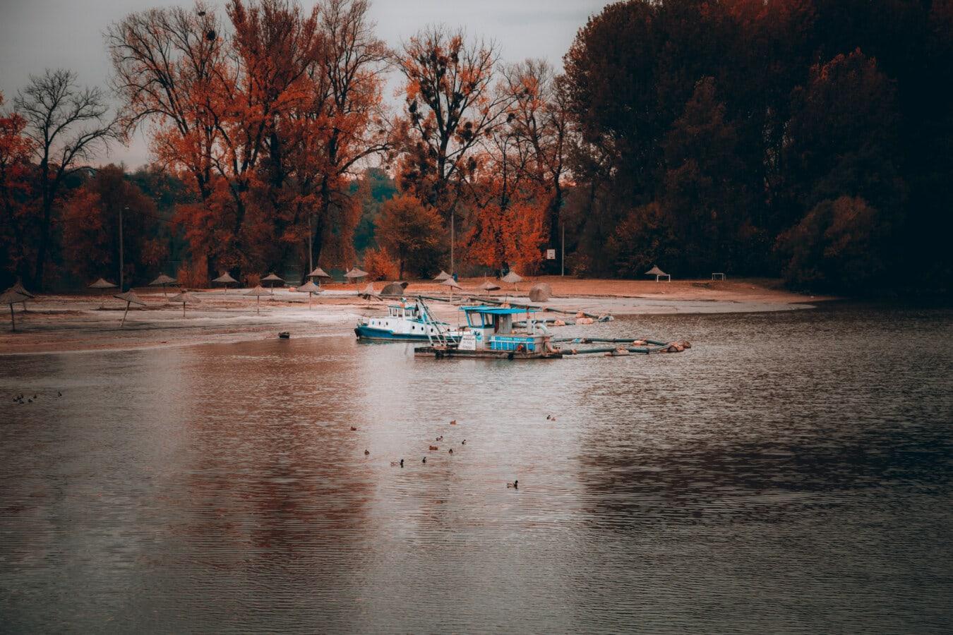 Boote, Schiff, Herbstsaison, Strand, majestätisch, Landschaft, ruhig, Boot, Wasser, Fluss
