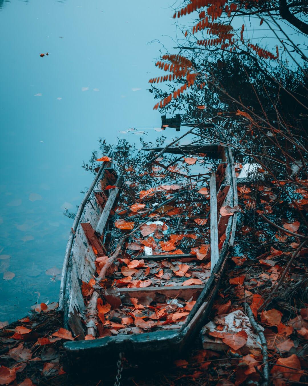 contre les inondations, bateau, abandonné, carie, côte, bateau de rivière, berge, paysage, automne, rivière