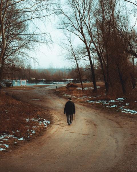 personnes âgées, homme, marche, plage, seul, Hiver, Itinéraire, neige, paysage, arbre