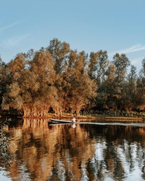 majestätisch, Herbstsaison, Boot, See, Motorboot, Landschaft, Wasser, Reflexion, Fluss, Struktur