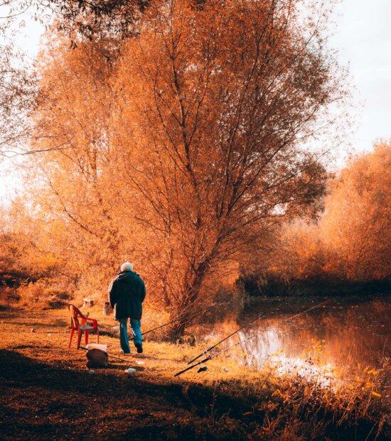 Angeln, Angelrute, Fischer, Flussufer, am See, Herbst, Landschaft, Struktur, Dämmerung, Park