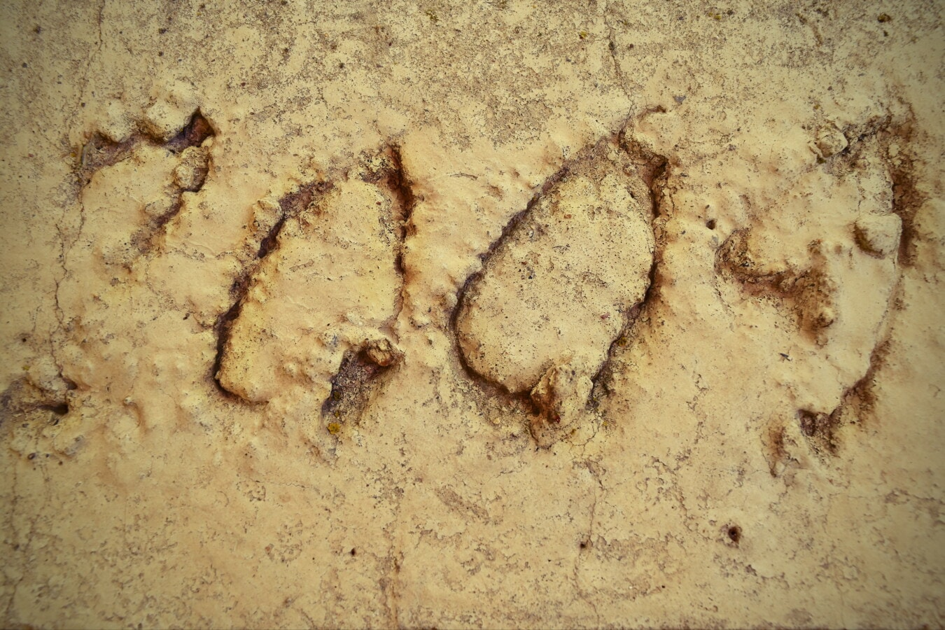 concrete, light brown, grunge, decay, rough, texture, dirty, old, abstract, pattern
