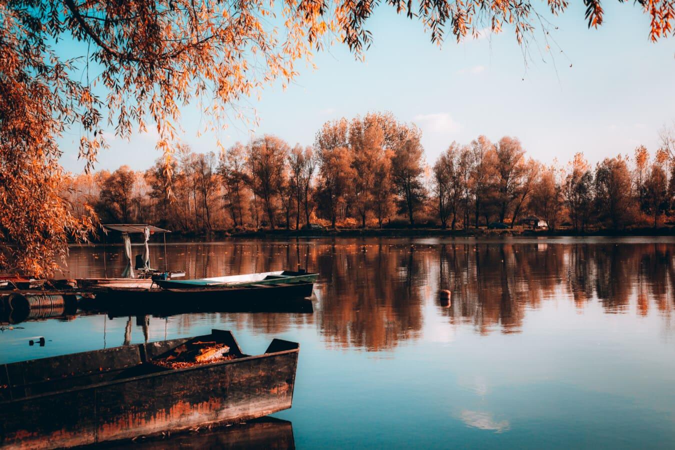 pri jazere, jesennej sezóny, reflexie, člny, Príroda, breh, voda, strom, jazero, rieka