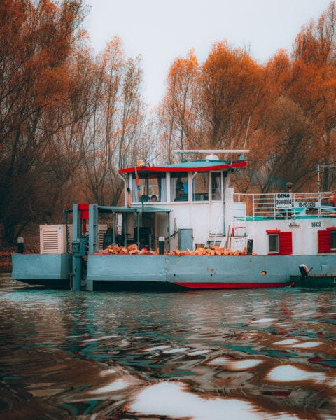 cargo ship, wood, transport, ship, water, boat, river, canal, harbor, winter