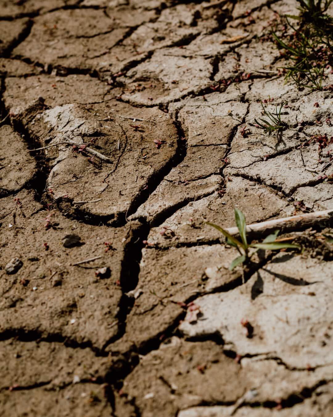 earth, dry season, dry, summer season, soil, wasteland, mud, drought, terrain, erosion