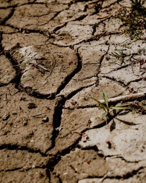 지구, 건조 한 계절, 건조, 여름 시즌, 토양, 황무지, 진흙, 가뭄, 지형, 침식