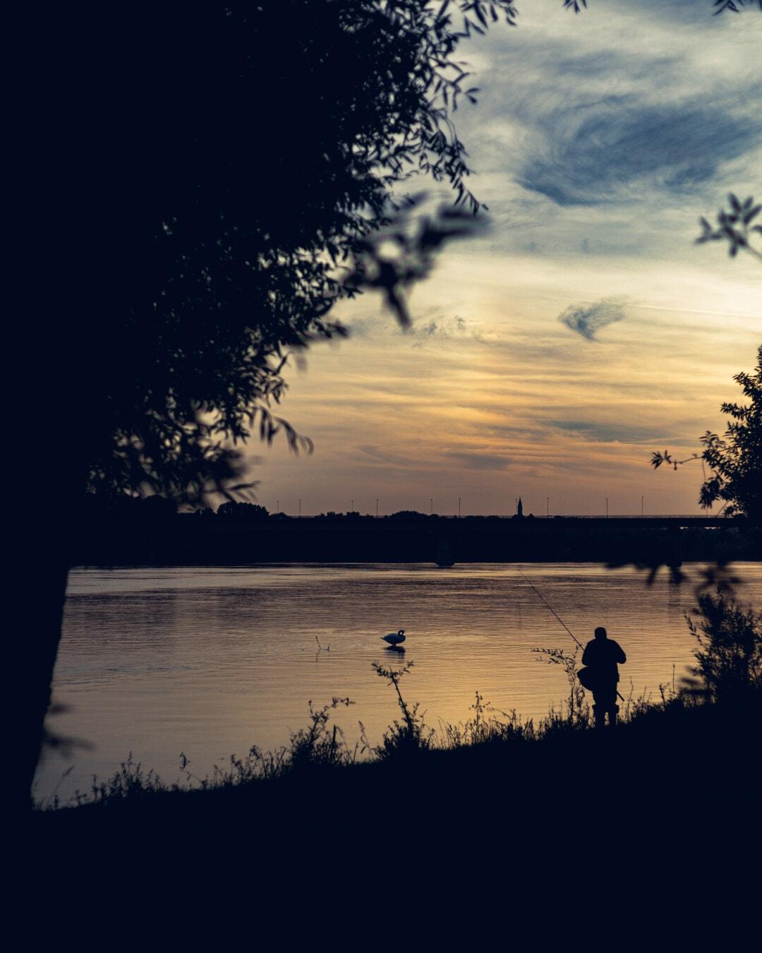 pêcheur, pêche, nuit, eau, coucher de soleil, aube, silhouette, Lac, réflexion, soleil