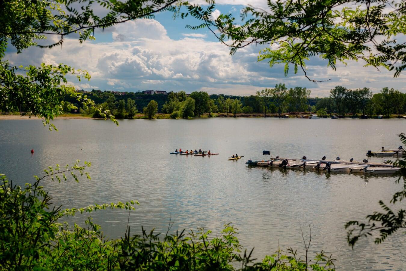 kayak, kayaking, harbor, boats, recreation, water, forest, shore, river, lakeside