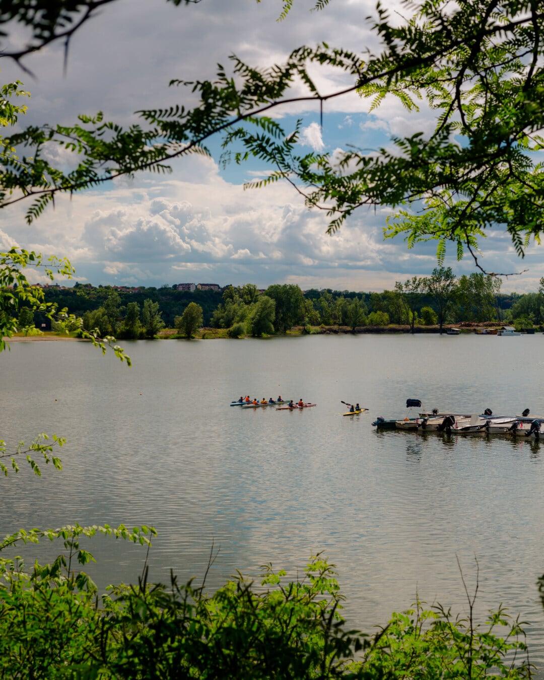 kayak, kayaking, sport, lakeside, recreation, river, water, lake, land, landscape