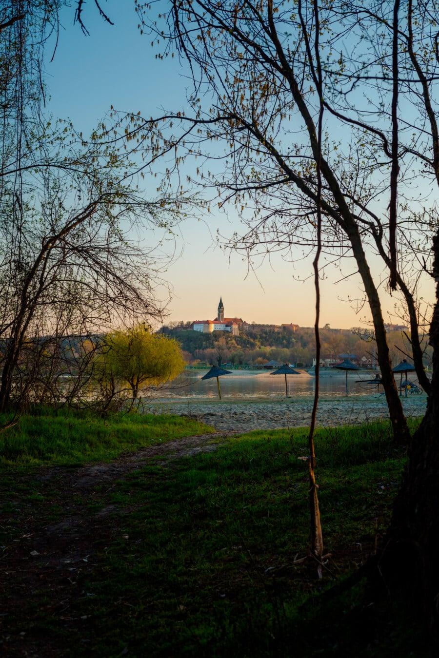Strand, Fluss, Frühling, Flussufer, Sonnenschirm, Weg, Bäume, Struktur, Wald, Landschaft