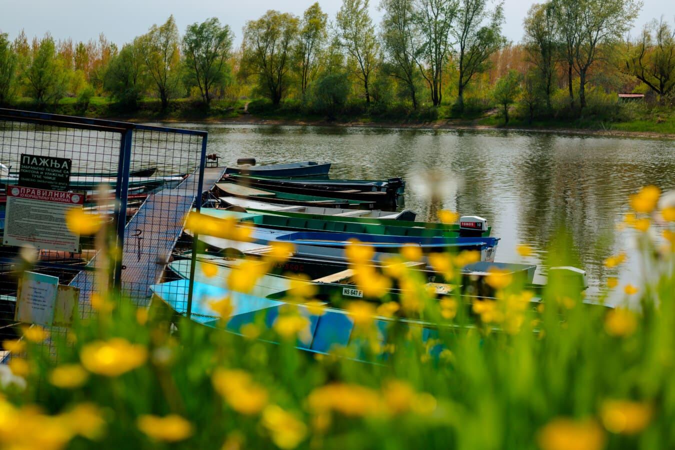 harbor, boats, boat, river boat, water, nature, landscape, lake, river, summer