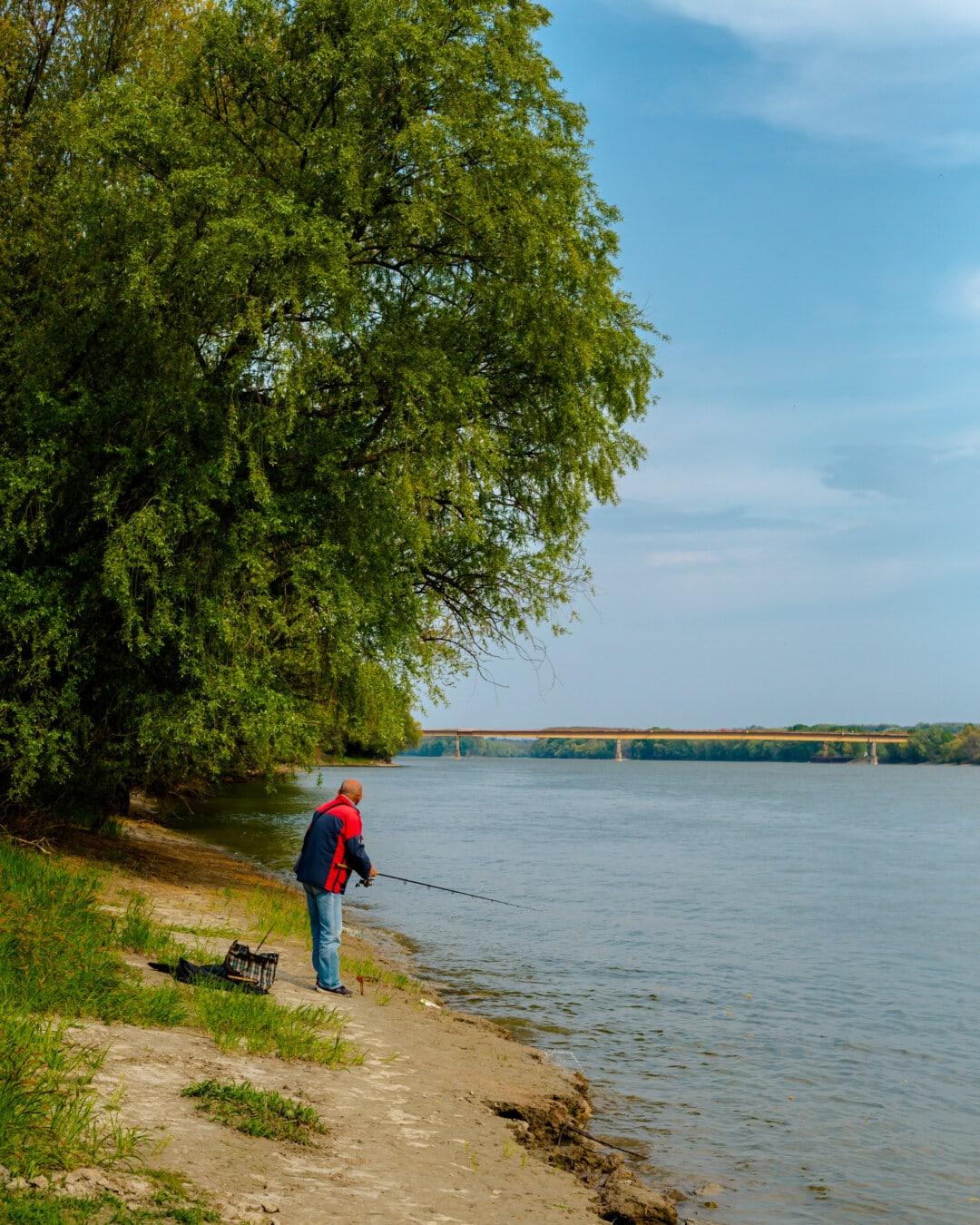 рибар, риболовен прът, Риболов, река, реката, мъж, постоянен, езеро, плаж, дърво