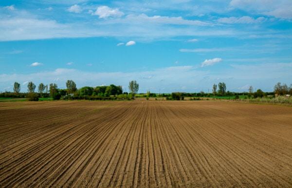 풍경, 초원, 잔디, 수평선, 필드, 농촌, 농업, 토양, 농지, 자연