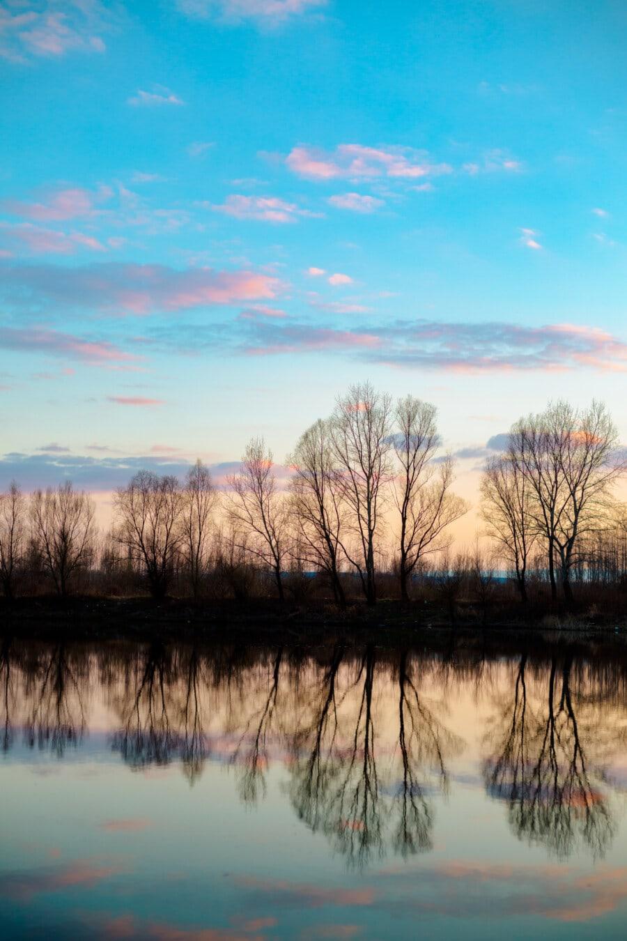 저녁, 레이크 사이드, 반사, 호수, 풍경, 트리, 분위기, 새벽, 물, 일몰