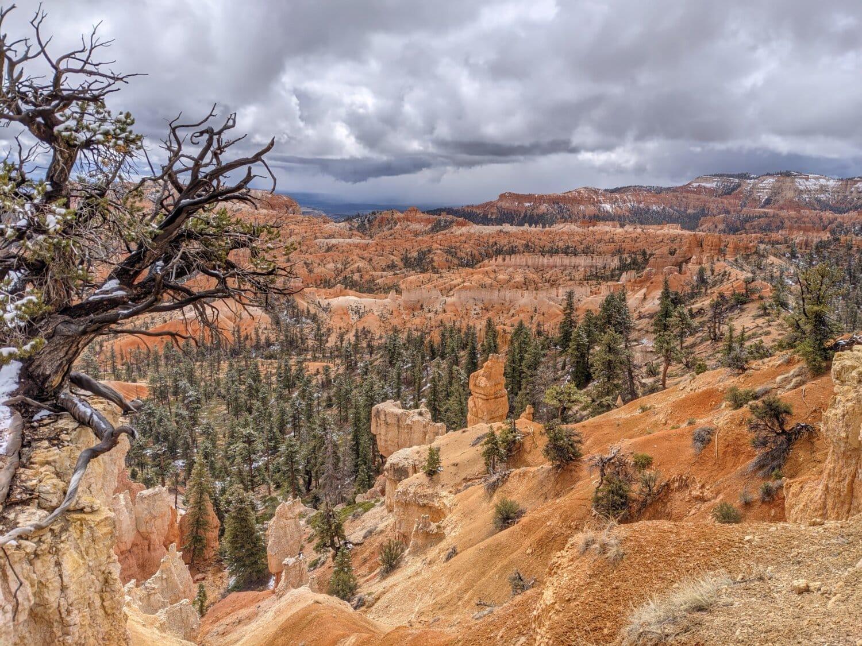 ravine, valley, landscape, canyon, desert, nature, mountain, rock, park, sandstone