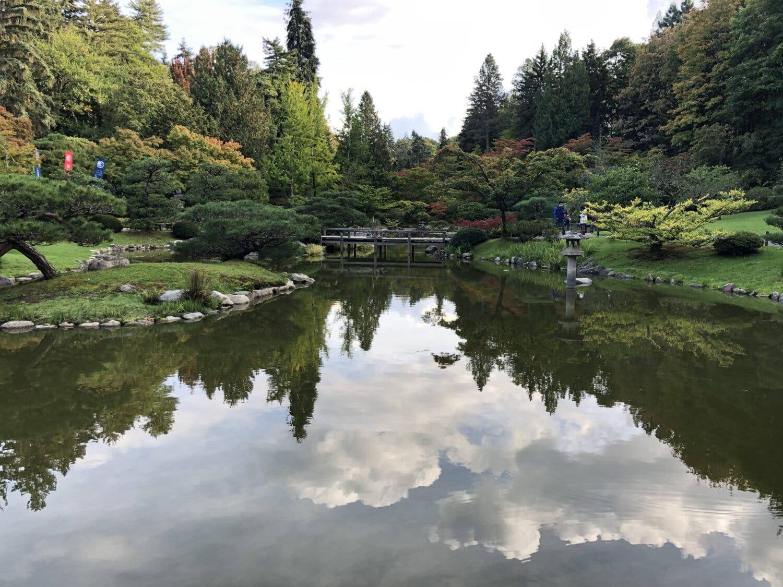 сад, красивые, озеро, садоводство, пейзаж, на берегу озера, канал, дерево, берег, лес