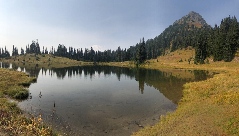 Berge, Sommersaison, am See, Ruhe, Atmosphäre, idyllisch, Wald, Wasser, See, Land