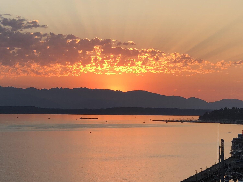 lever du soleil, jaune orangé, rayons de soleil, paysage, plage, bord de mer, au bord du lac, eau, mer, rive