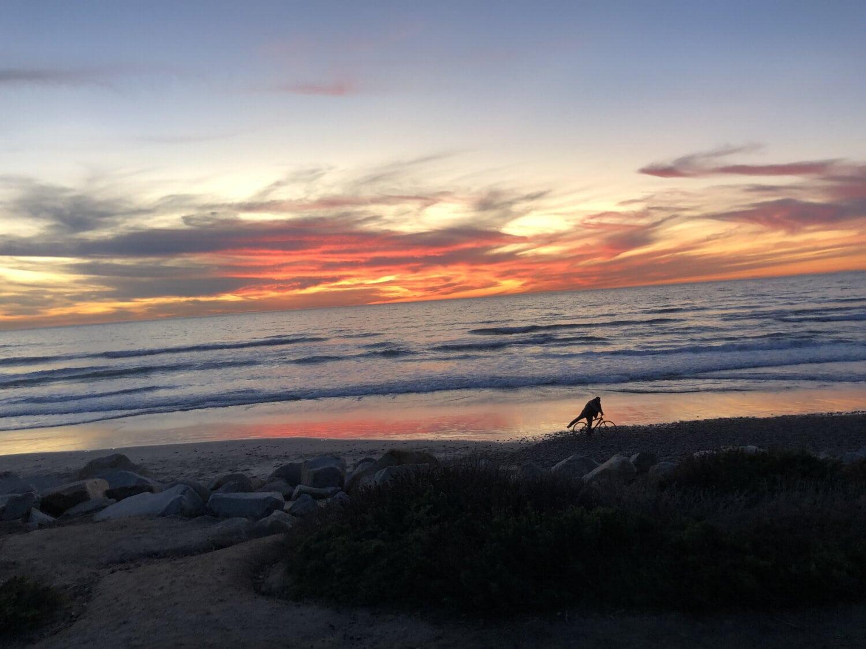 coucher de soleil, ammophiles, en bord de mer, côte, plage, nuages, aube, paysage, océan, rivage