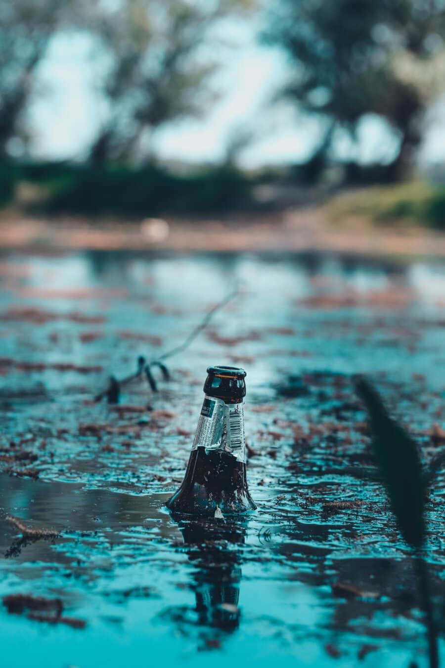 vecchio, vetro, bottiglia, immondizia, Cestino, palude, natura, acqua, bagnato, nuoto