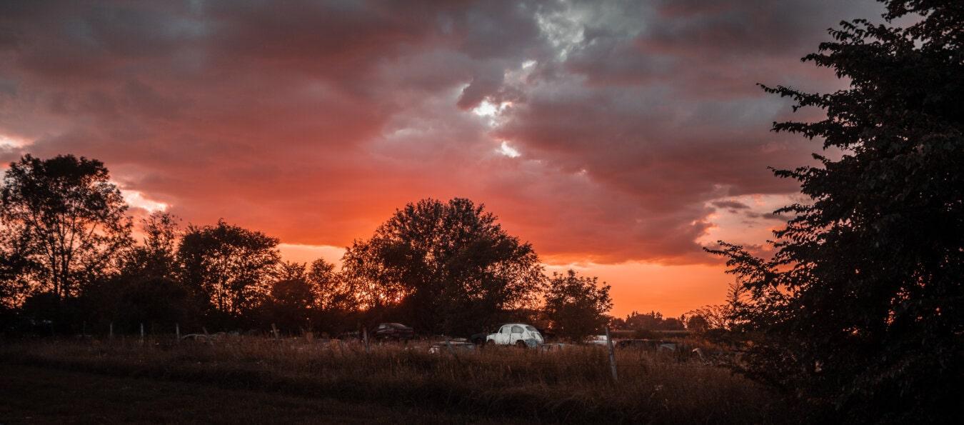 terre en friche, voitures, coucher de soleil, garbage, atmosphère, aube, paysage, soleil, arbre, soirée