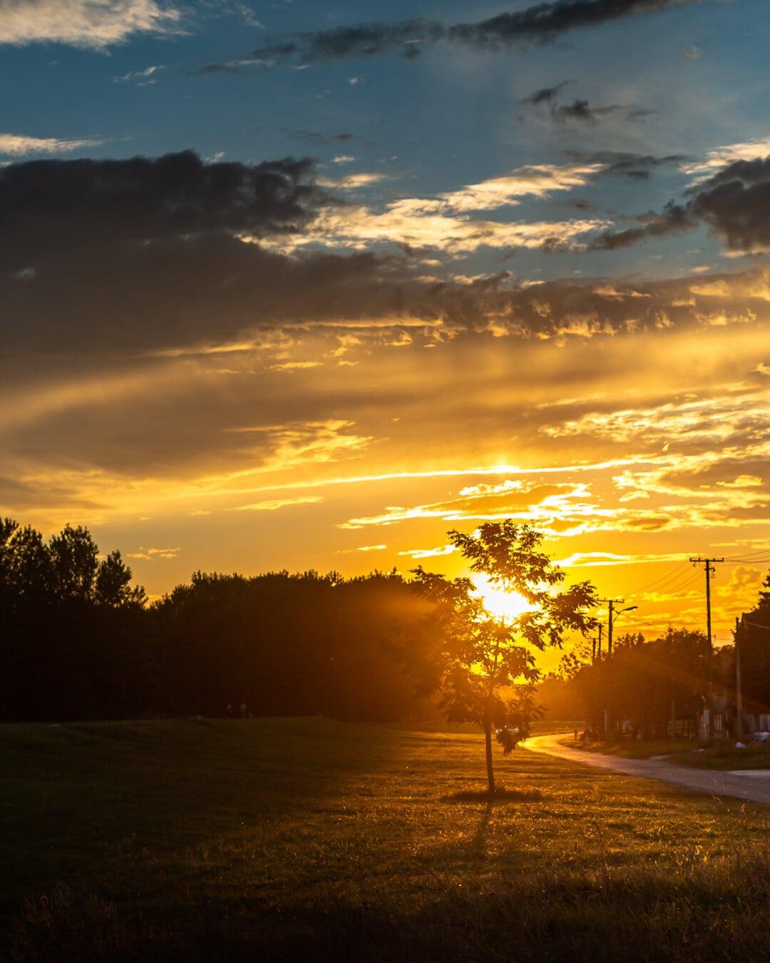 Lumina soarelui, strada, rurale, apus de soare, razele de soare, umbra, iluminare din spate, peisaj, atmosfera, Star