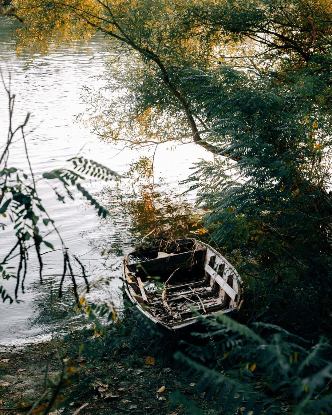 abandonado, barco, arbustos, orilla del río, paisaje, agua, Río, naturaleza, árbol, madera