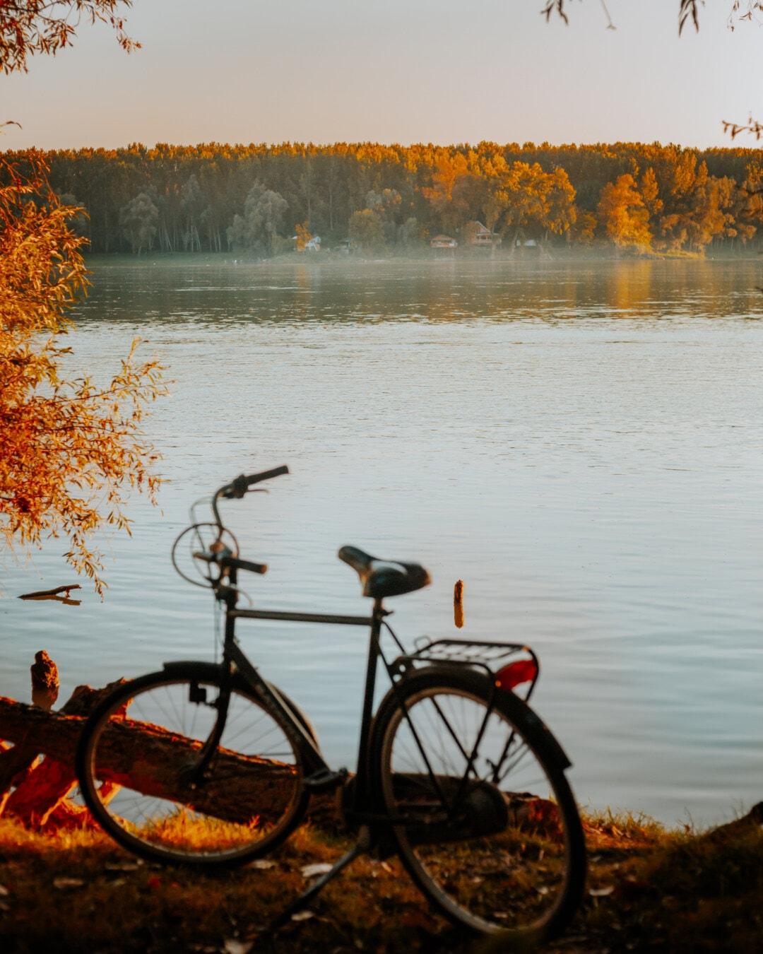 霧, 川岸, 川, 地平線, 自転車, サンセット, サイクリスト, 自転車, 夜明け, 水