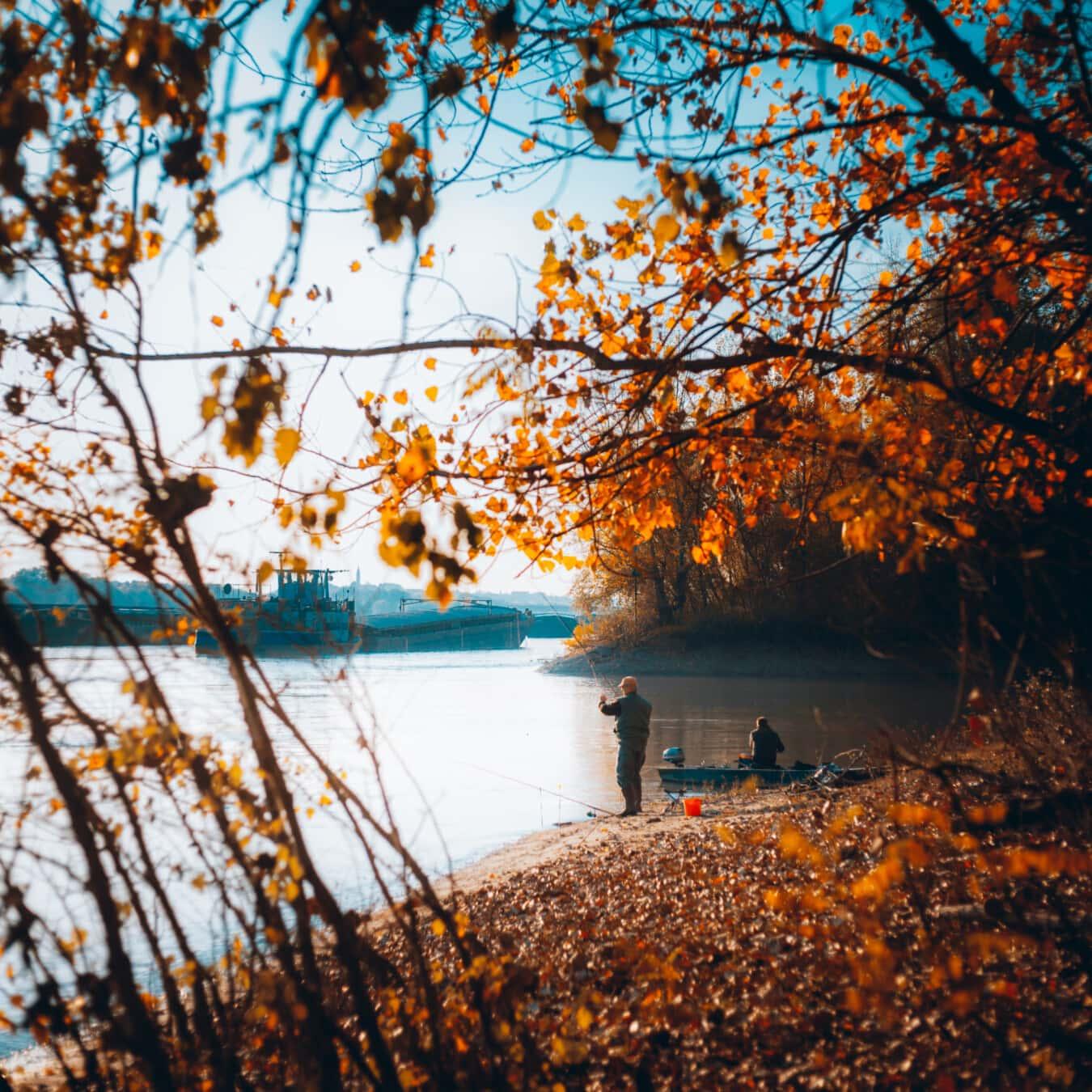 釣り竿, 釣りギア, 釣り, 漁師, 川, 川岸, 秋のシーズン, はしけ, 貨物船, 葉