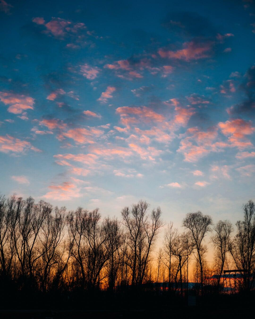 Morgen, Dämmerung, Atmosphäre, majestätisch, Wolken, Dämmerung, Landschaft, Sonne, Sonnenuntergang, Natur