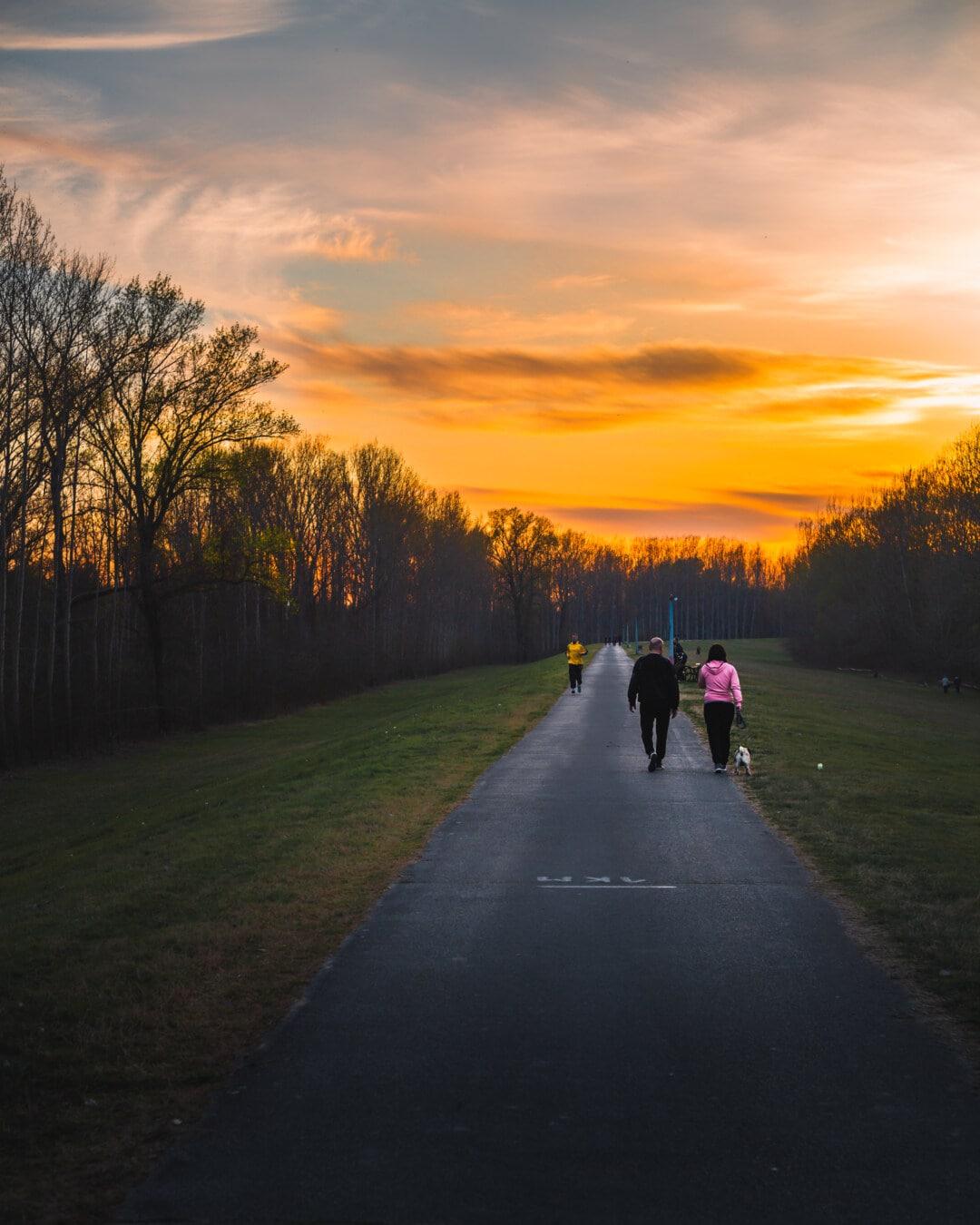 ジョギング, 人々, レクリエーション, サンセット, 道路, 身体活動, 夜明け, 草, 農村, アセント