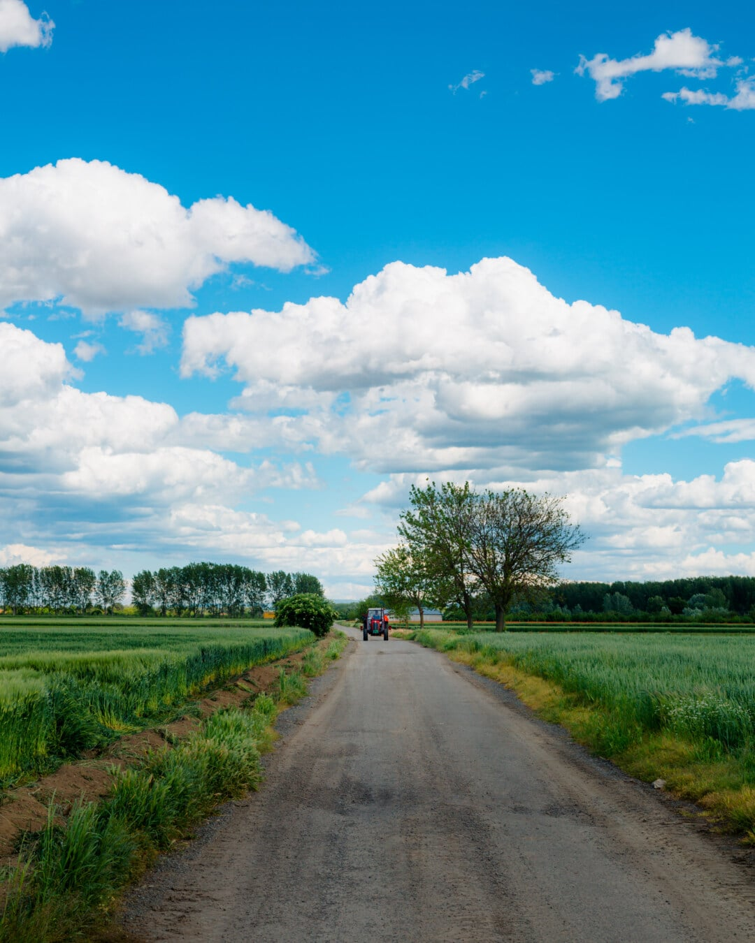field, agricultural, tractor, vehicle, agriculture, road, rural, atmosphere, grass, nature