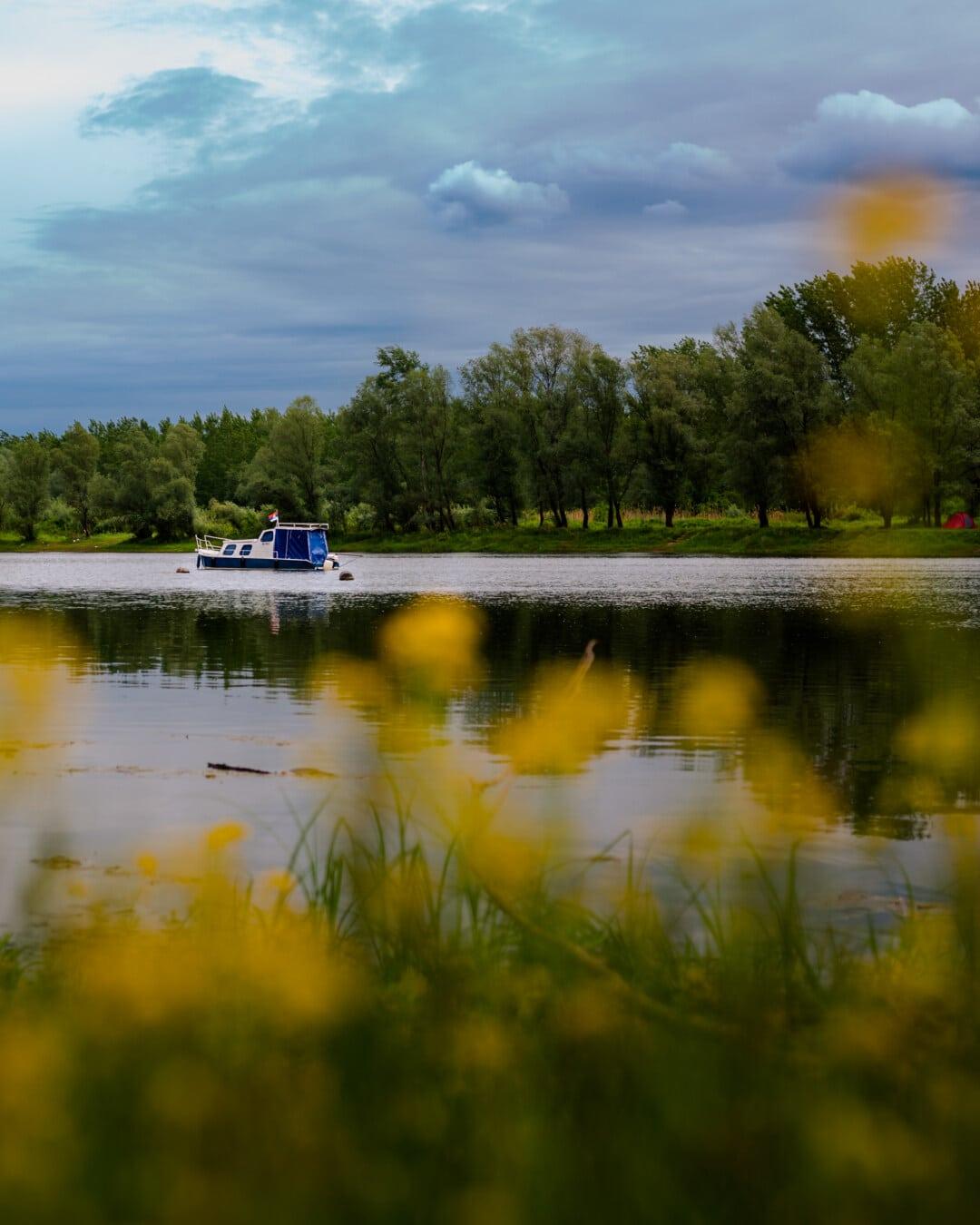 åstranden, motorbåt, reflektion, sjön, landskap, floden, vatten, Shore, Utomhus, naturen