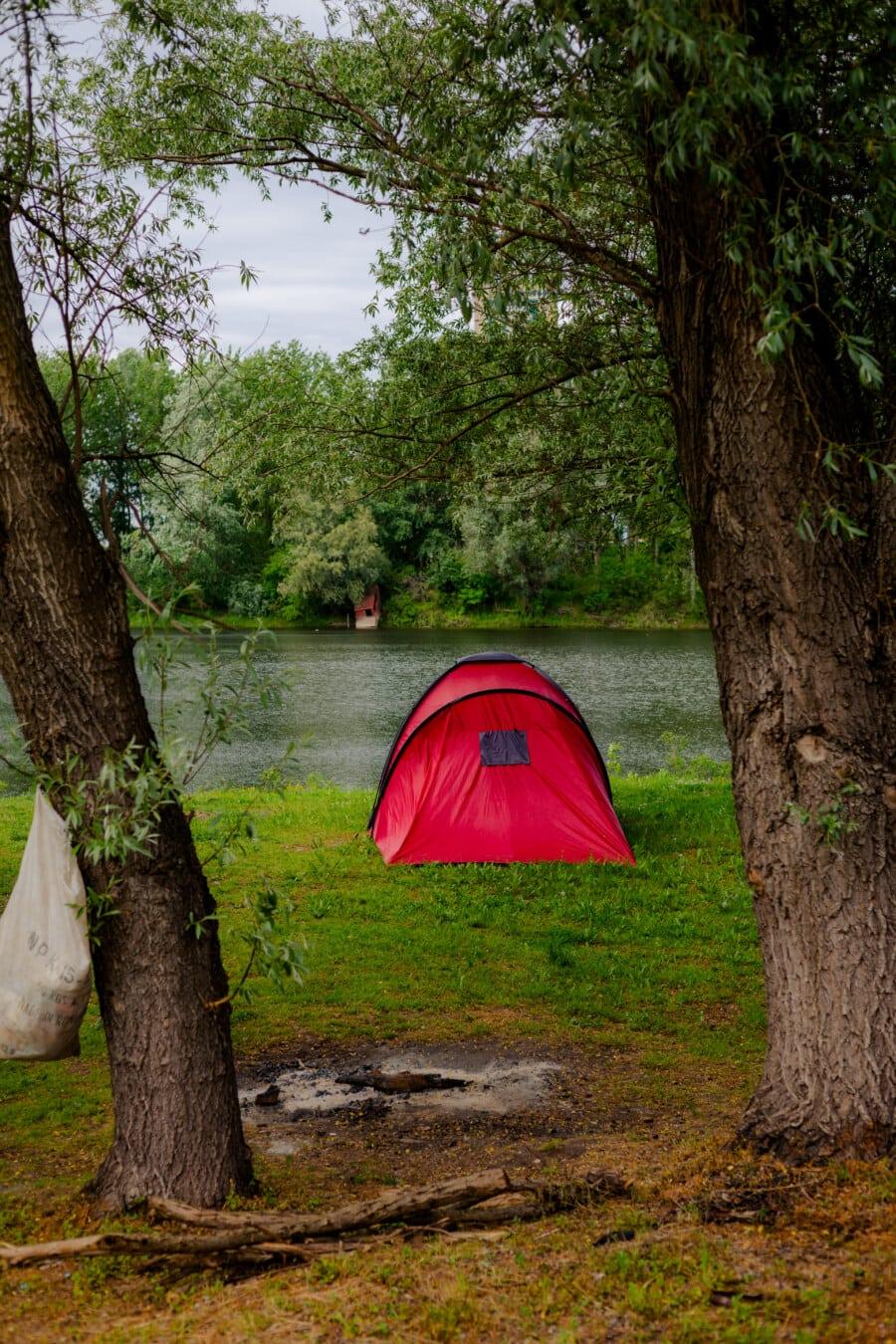 tente, rouge, feu de camp, Camping, forêt, berge, rivière, nature, paysage, arbre