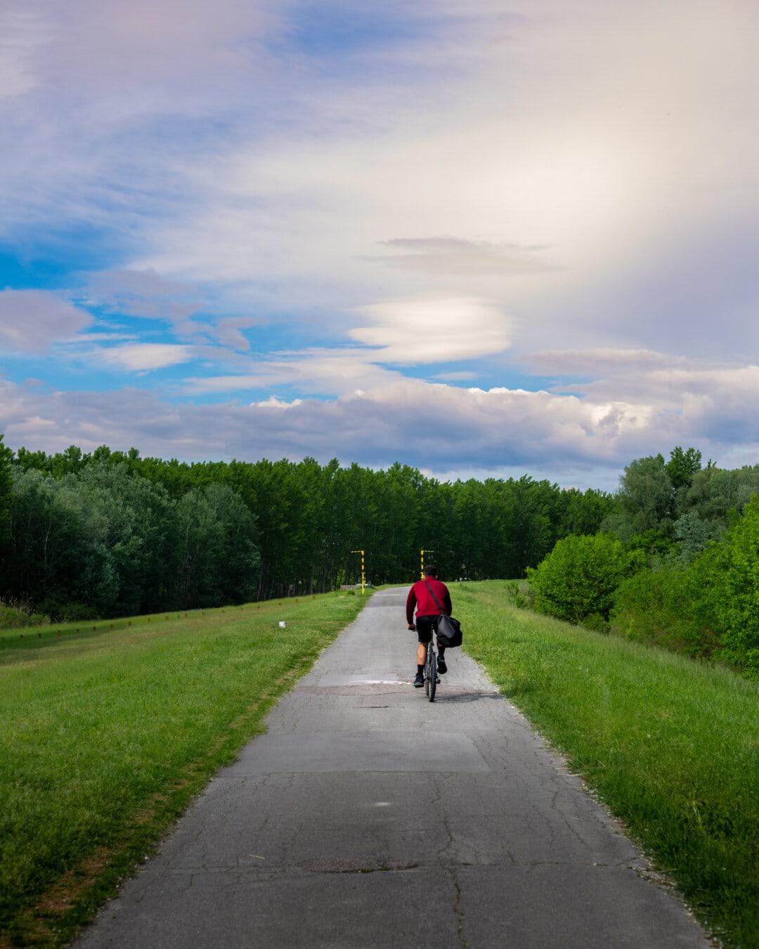 велосипед, Велоспорт, велосипедов, велосипедист, осина, дорога, наклон, восхождение, девушка, велосипед