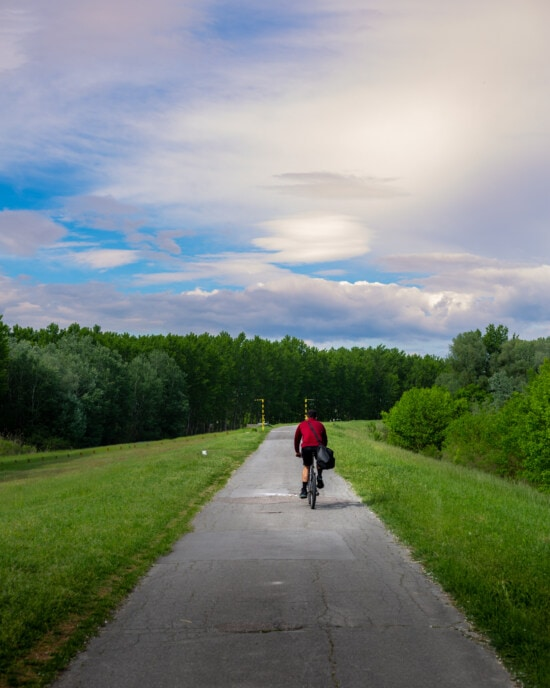 bicycling, cycling, bicycle, cyclist, aspen, road, slope, ascent, girl, bike