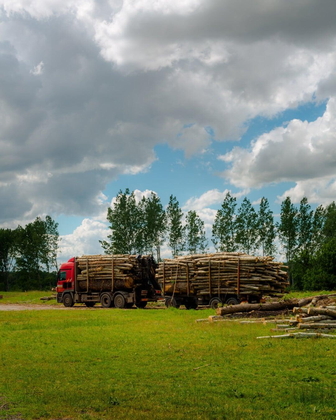 LKW, groß, Transport, Holz, Branche, Fahrzeug, Struktur, im freien, Natur, Struktur