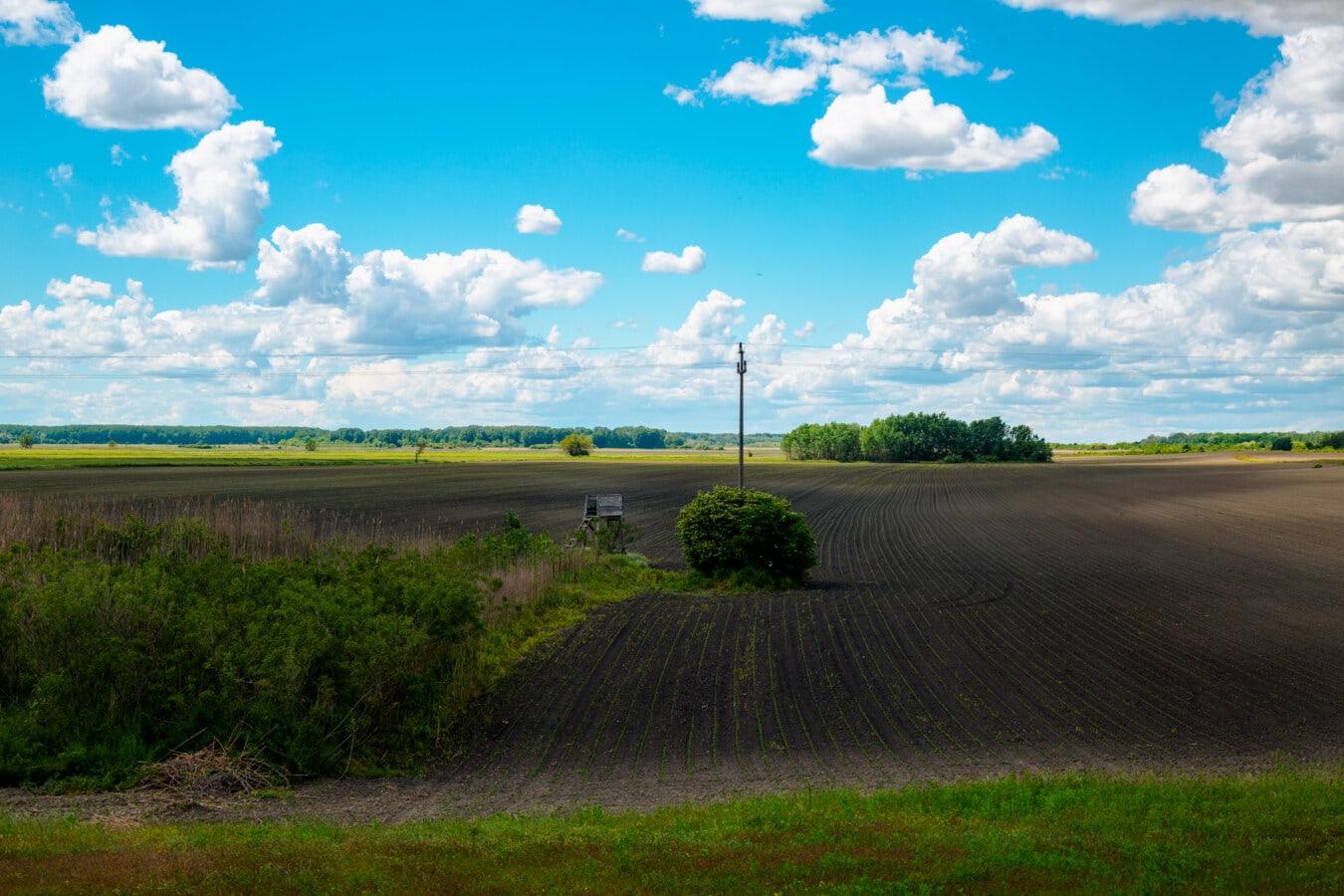 Feld, Landwirtschaft, Hügel, Panorama, Wiese, Horizont, Landschaft, Gras, des ländlichen Raums, Landschaft