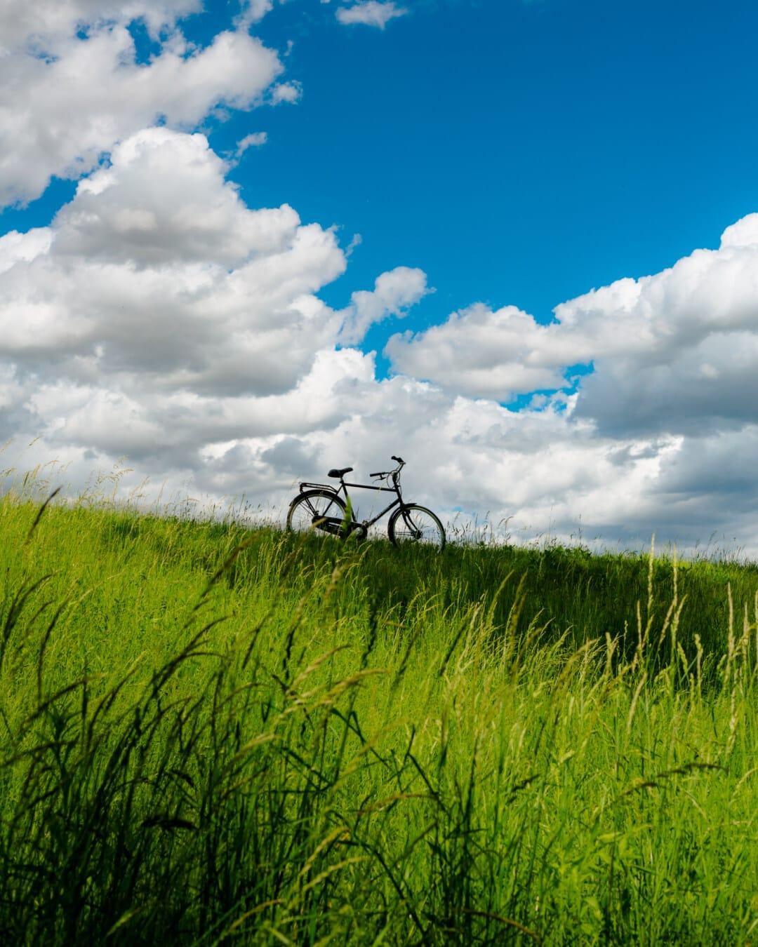 Fahrrad, Hügel, blauer Himmel, Graspflanzen, Frühling, Sommer, Atmosphäre, des ländlichen Raums, Bauernhof, Gras