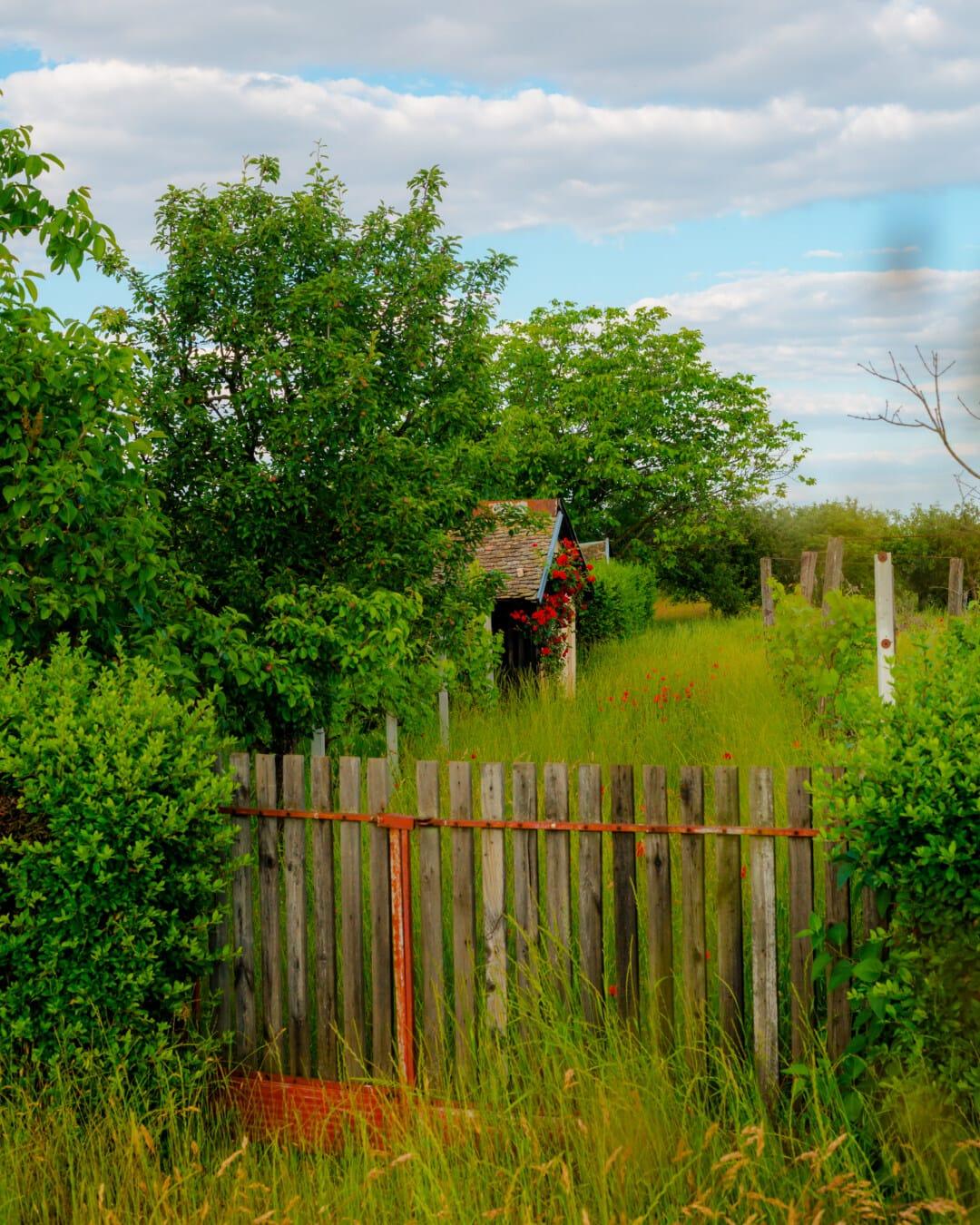 picket fence, barn, farm, village, farmland, farmhouse, orchard, trees, landscape, grass