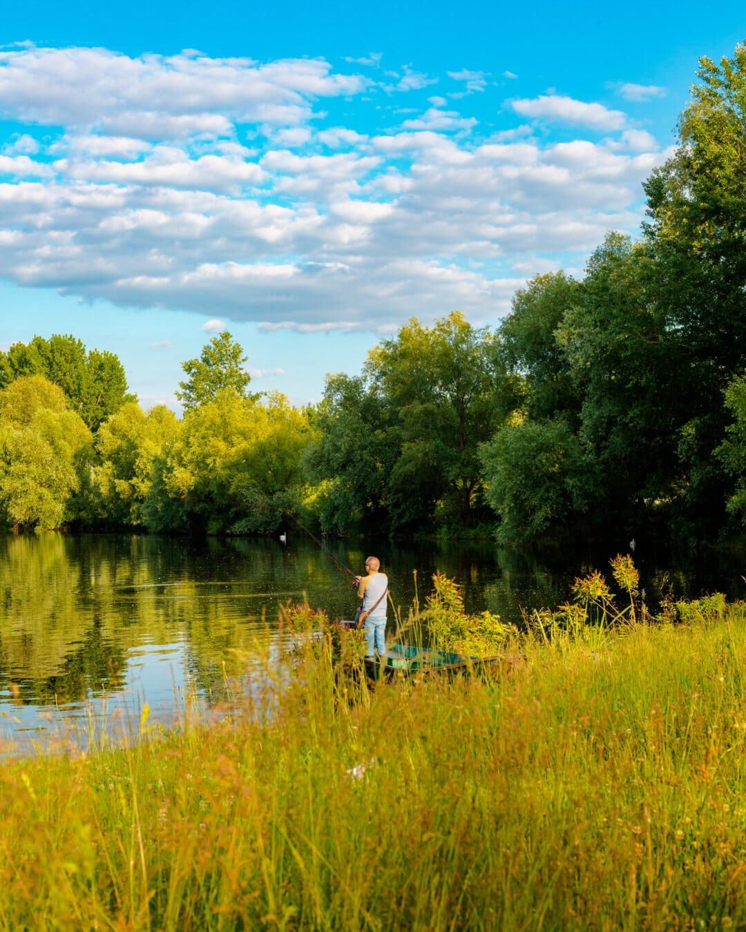 риболовен прът, Риболов, рибарска лодка, рибар, трева, гора, пейзаж, дърво, семена, рапица