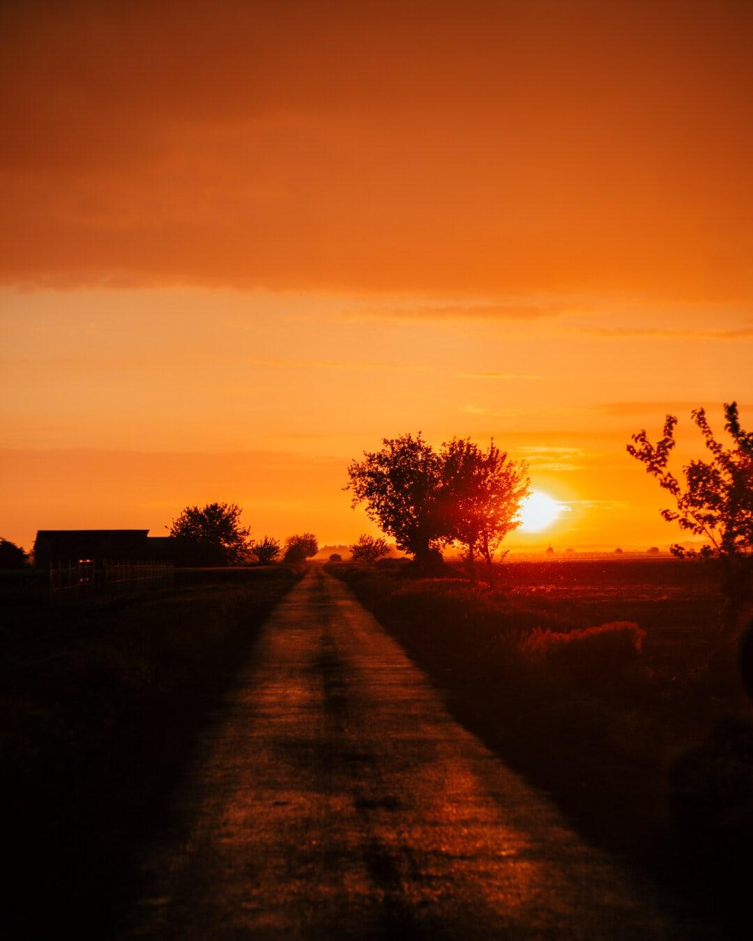 rayons de soleil, lumière du soleil, rouge foncé, soleil, jaune orangé, coucher de soleil, Itinéraire, domaine, Agriculture, Star