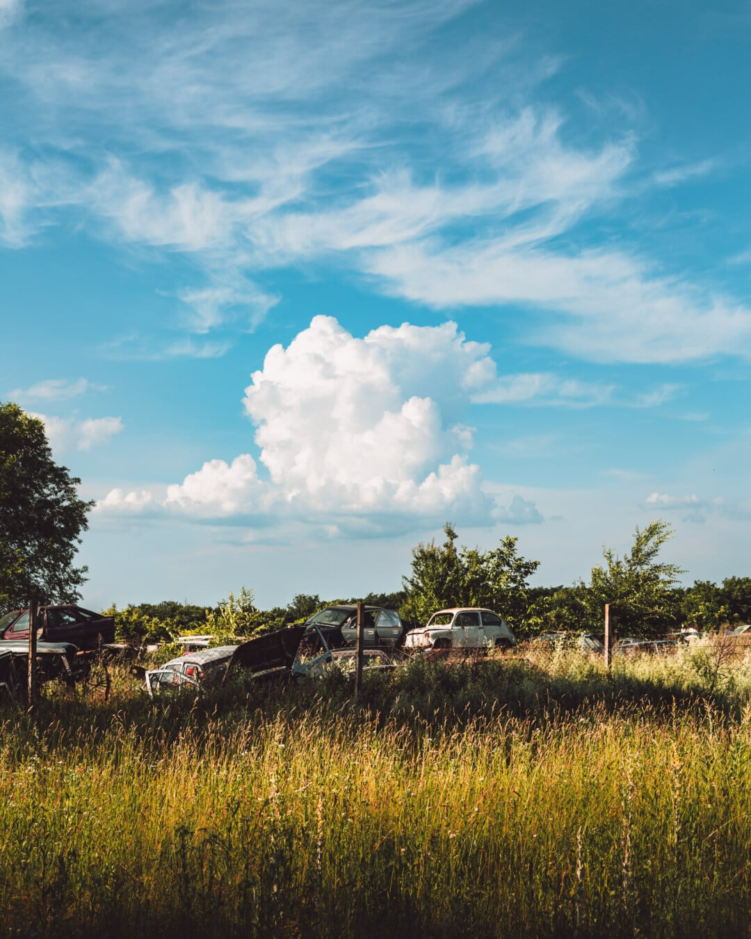 cars, junk, junkyard, garbage, rural, abandoned, decay, old, field, landscape