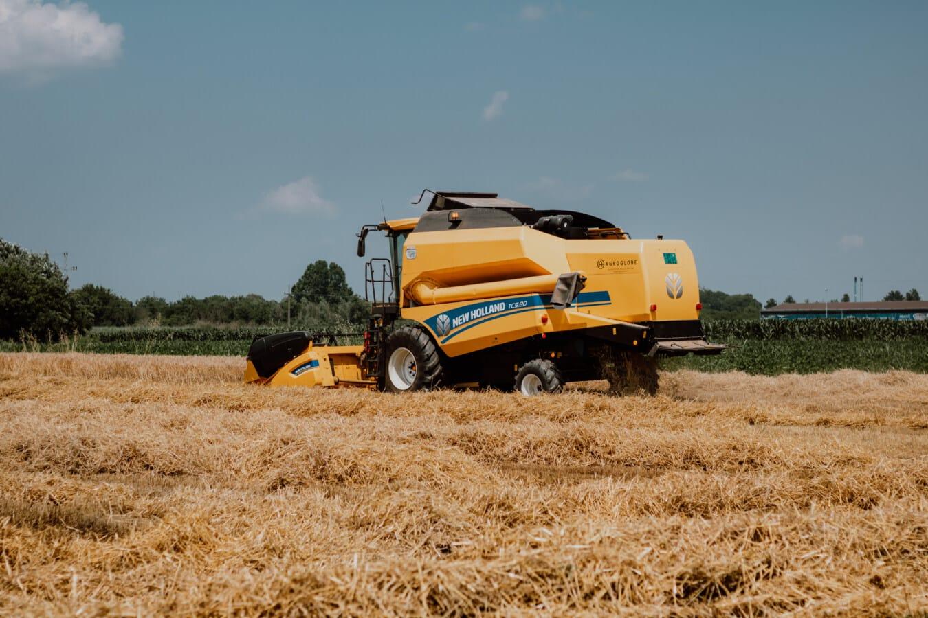 Branche, Maschine, Harvester, Ausrüstung, Maschinen, Weizen, Landwirtschaft, Stroh, Bauernhof, Boden