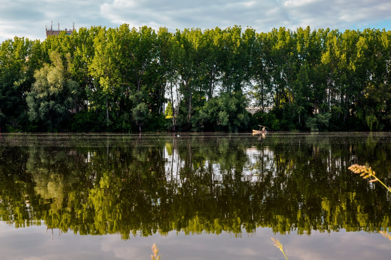 jezero, jezero pejzaž, obale, odraz, krajolik, voda, šuma, vrba, priroda, drvo