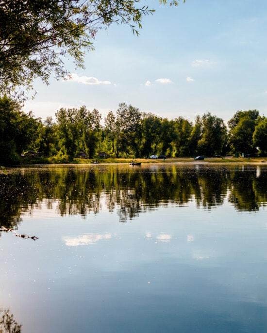 réflexion, arbre, rive, au bord du lac, eau, Lac, paysage, bois, nature, miroir